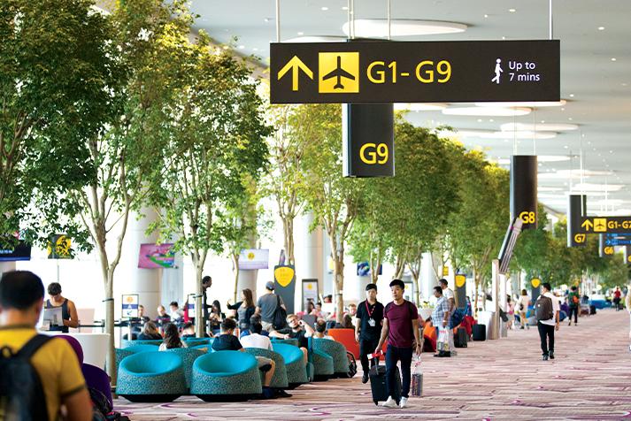 Transiting Guide | Singapore Changi Airport